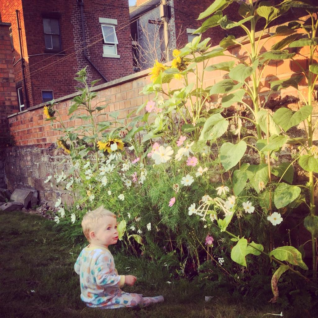 Baby and sunflowers.
